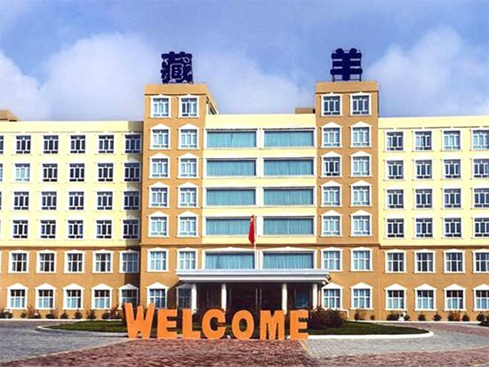藏羊国际地毯基地股份有限公司岗位招聘