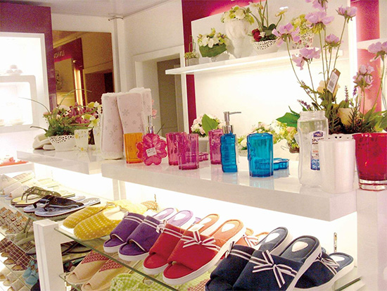 """乐巢家居是一家专业经营时尚家居用品的品牌连锁企业,公司以""""和顾客一起创造美好家居生活""""为核心,积极倡导现代时尚的家居文化理念,为消费者提供全面的家居软装饰规划建议,并集新产品开发、设计、销售于一体"""